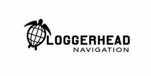loggerhead-navigation-85892591